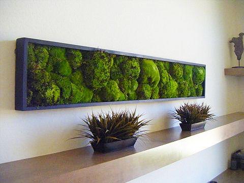 Toits Vertige. Conception de mur vegetal vivant ou preserve à Montréal.